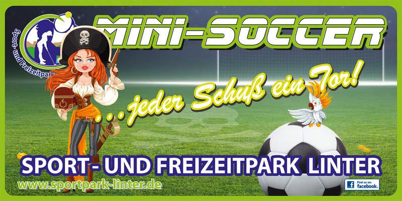 Mini-Soccer & Mini Hockey
